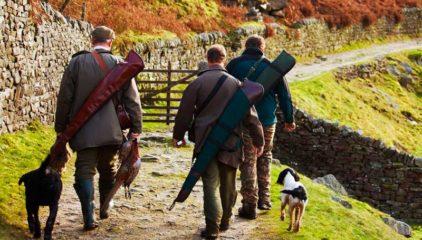Carnes de caza Solobuey: venado, jabalí y perdiz