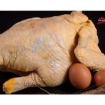 Maridando pollo de corral