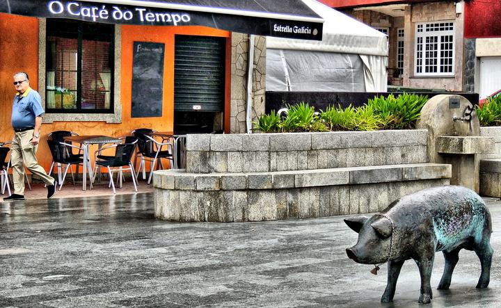 cerdo Galicia