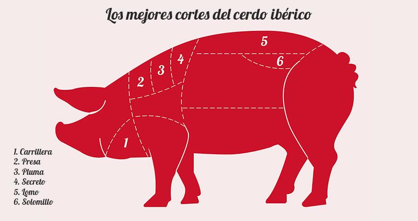 Cortes del cerdo iberico