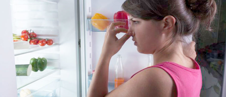 Trucos caseros para eliminar malos olores en tu nevera