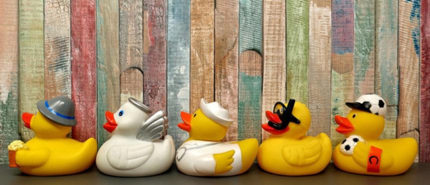 ¿CUA… ntos patos conoces?