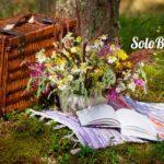 Cómo preparar un pícnic perfecto: consejos, recetas y lugares